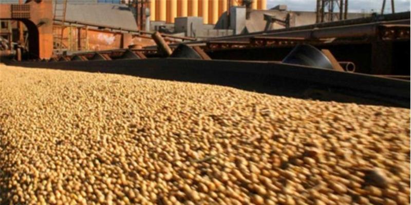Angola arrisca sanções da OMC ao impor restrições para dinamizar importação a granel