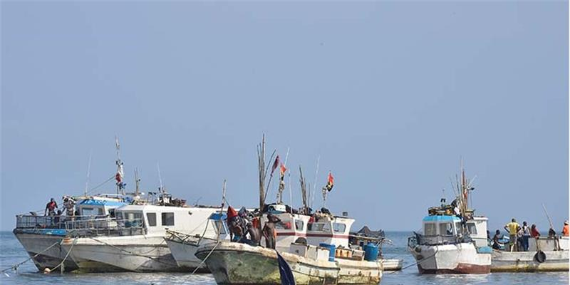 """Fiscalização nas pescas """"ao sabor da gasosa"""" fecha os olhos às irregularidades"""