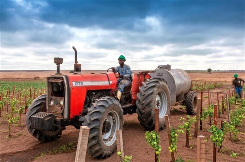 IGAPE põe quatro empreendimentos agro-industriais na rota da privatização imediata