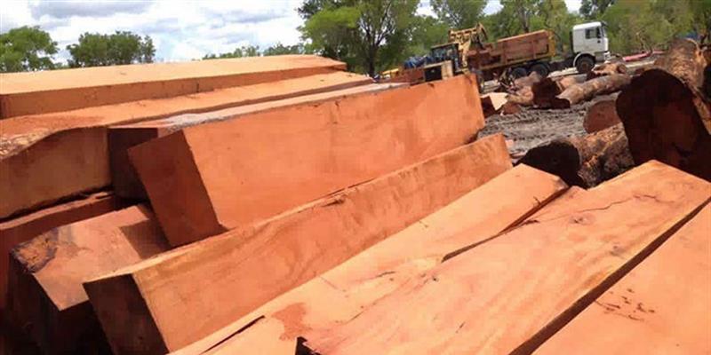 Exportações de madeira serrada caíram 58%  para 33,4 mil metros cúbicos