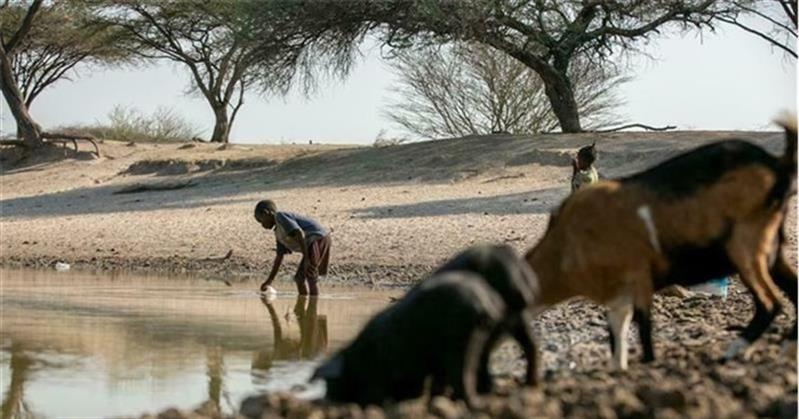 Há 1,3 milhões de pessoas que sofrem de insegurança alimentar aguda em três províncias do sul Angola