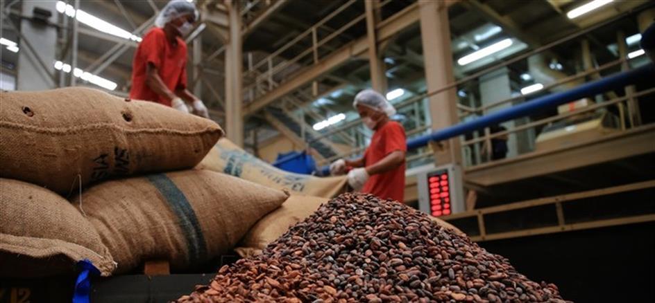 Costa do Marfim e Gana falham tentativa de acordo para fixar preço do cacau